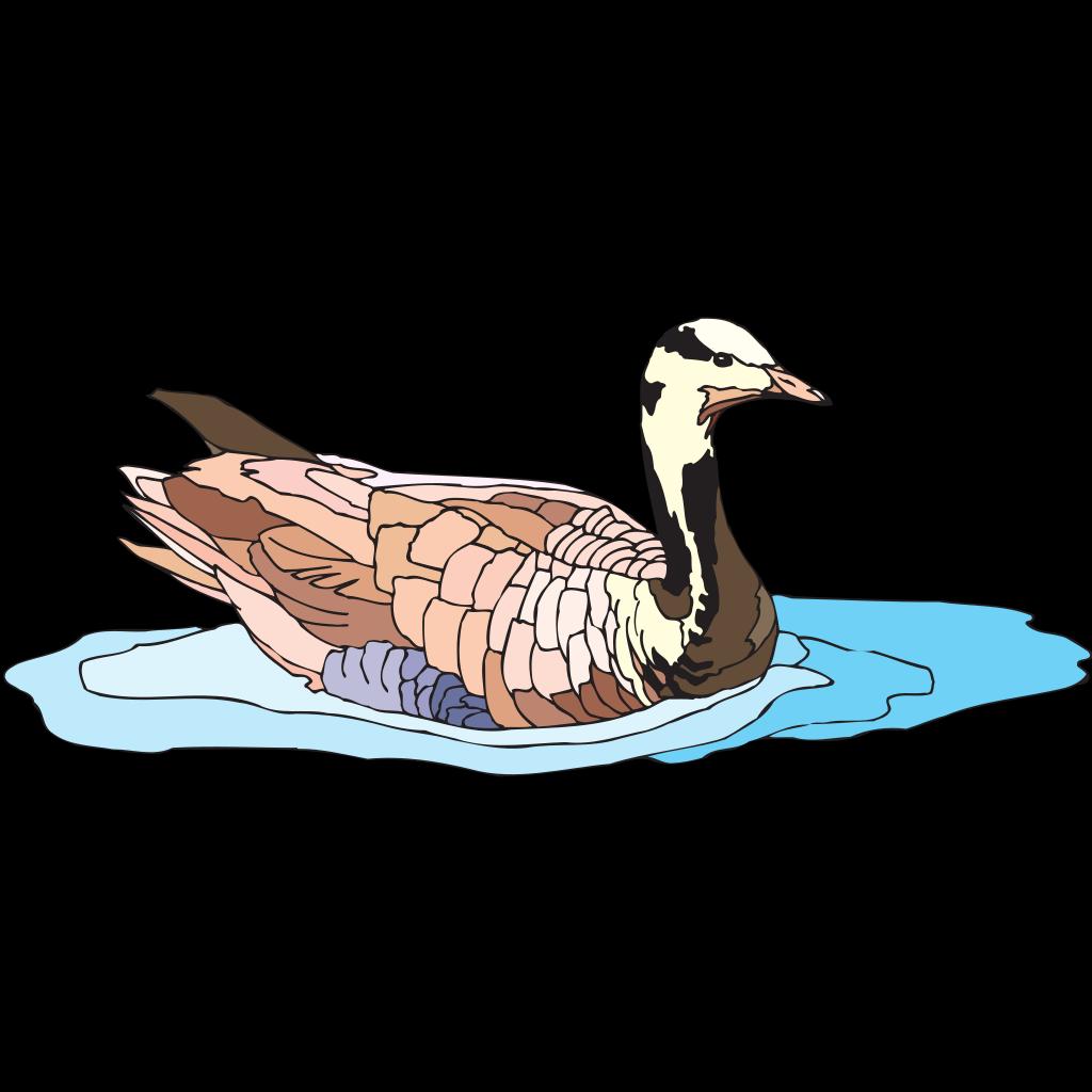 Colorful Swimming Duck SVG Clip arts