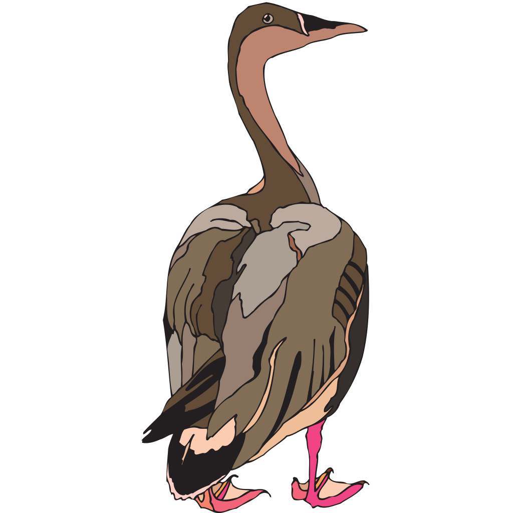 Duck With Pink Feet SVG Clip arts