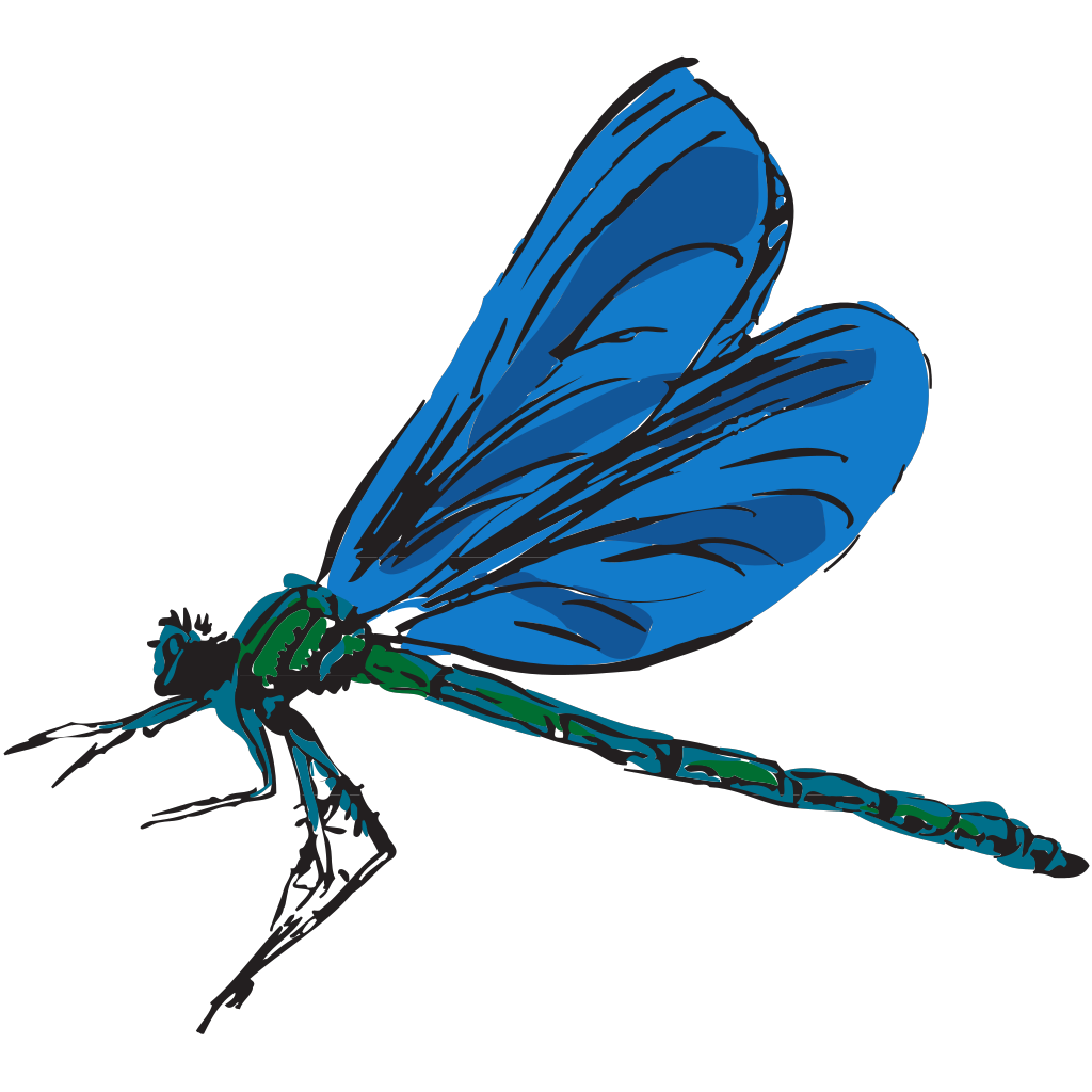 Clip Art Transparent Background Designing Projects Dragonfly