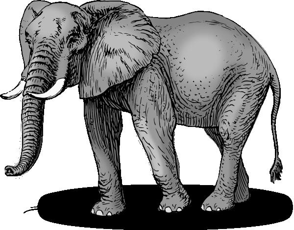 Elephant SVG Clip arts