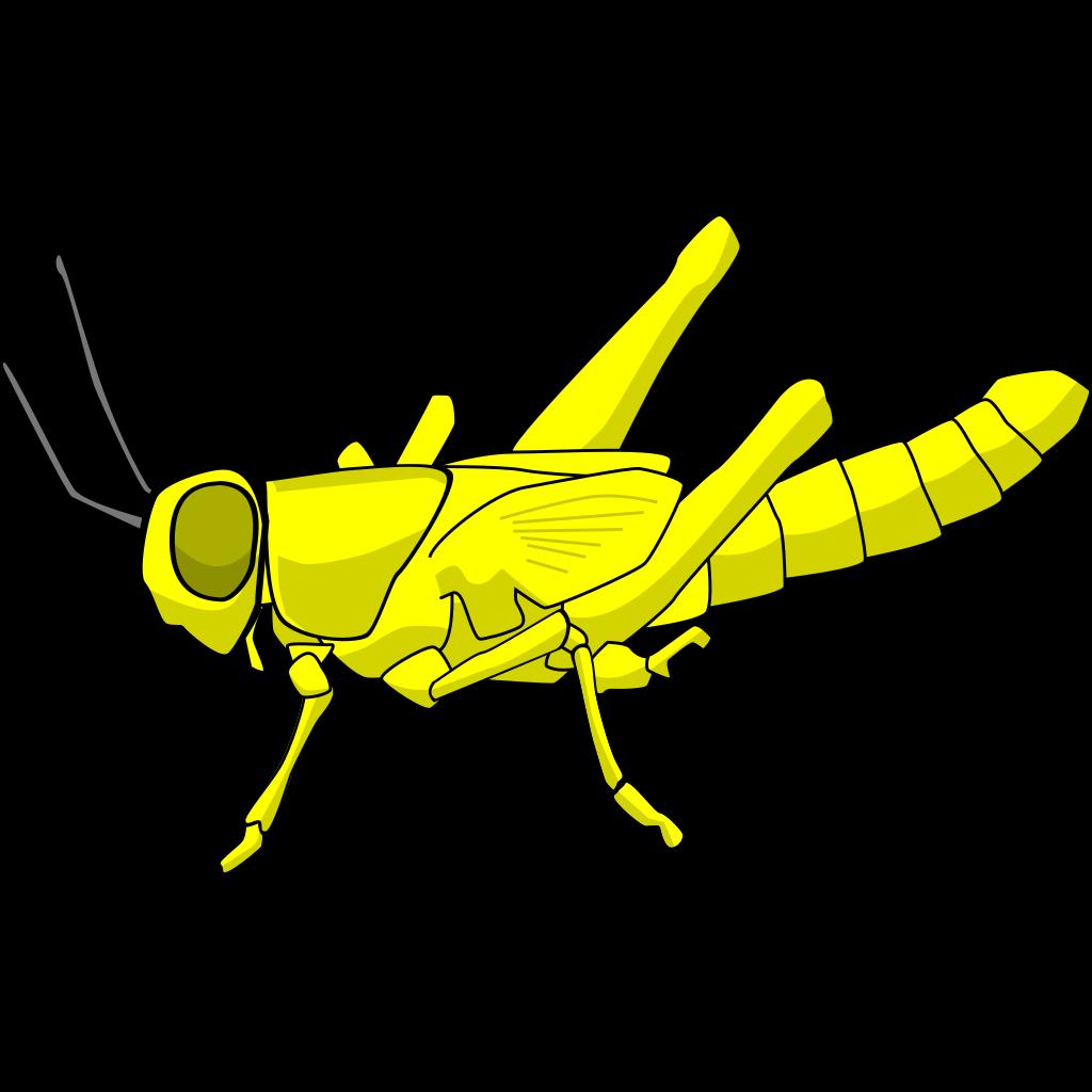 Locust SVG Clip arts