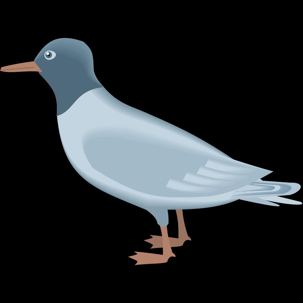 Blue Gull SVG Clip arts
