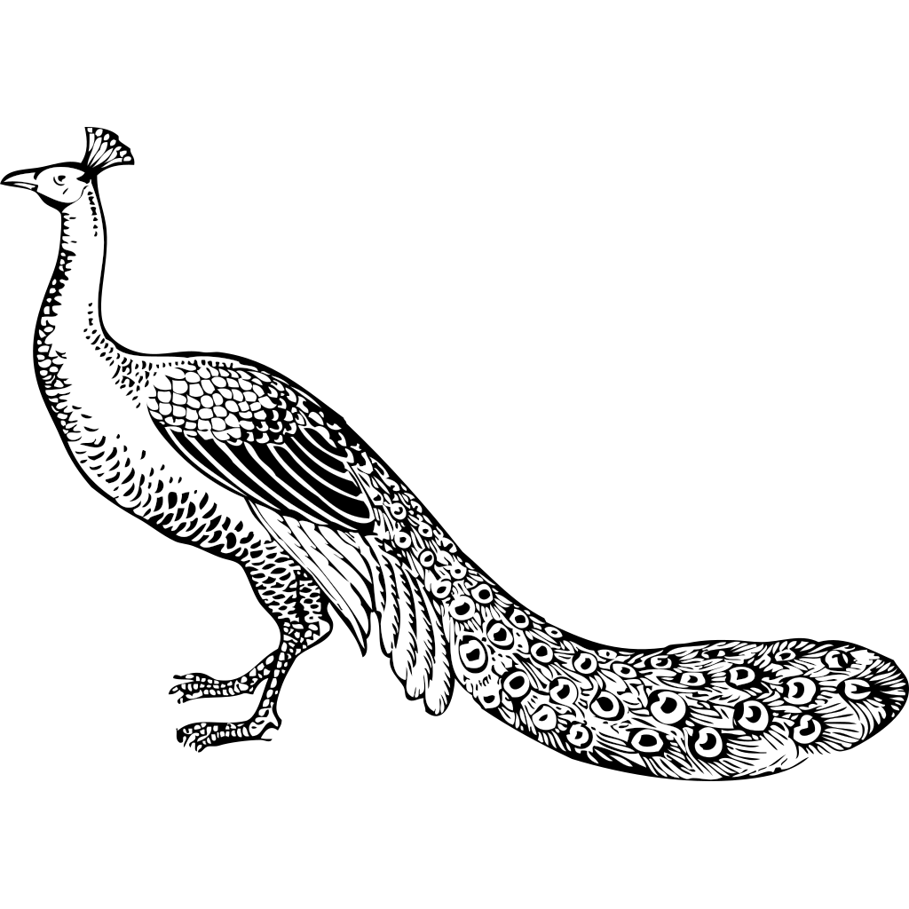 Peacock At The Gate SVG Clip arts