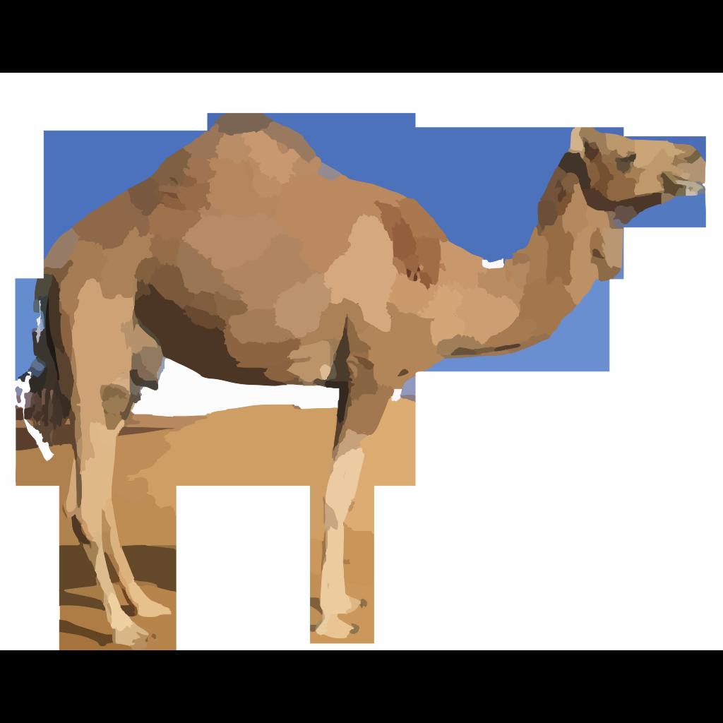 Camel SVG Clip arts