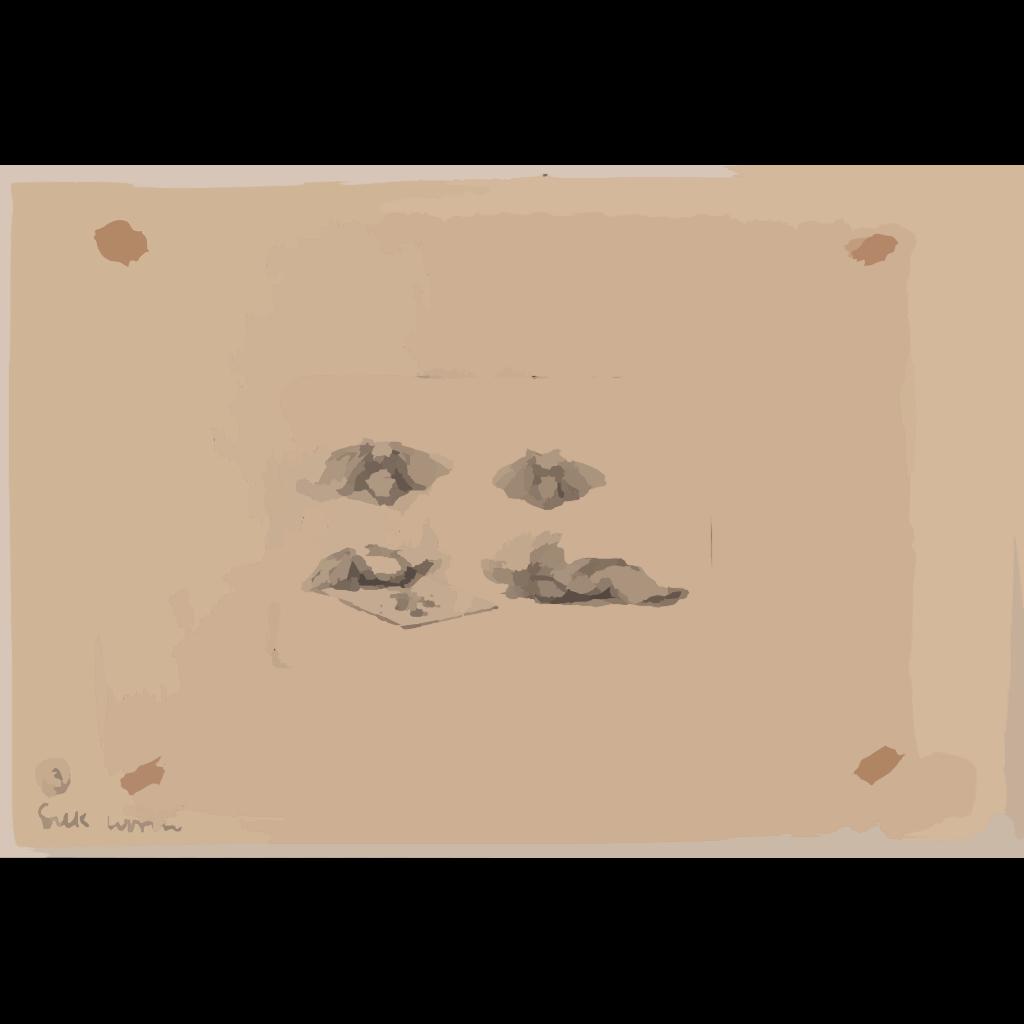 Silk Worm SVG Clip arts