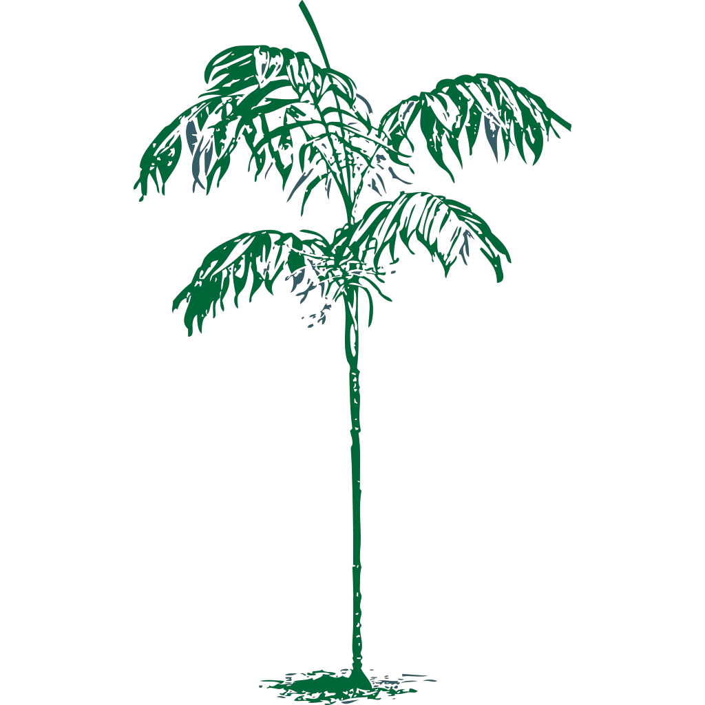 Coconut Palm Tree SVG Clip arts