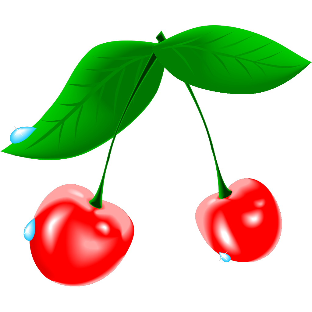 Bird Cherry SVG Clip arts