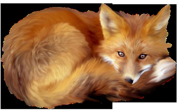 Artistic Fox Transparent PNG SVG Clip arts