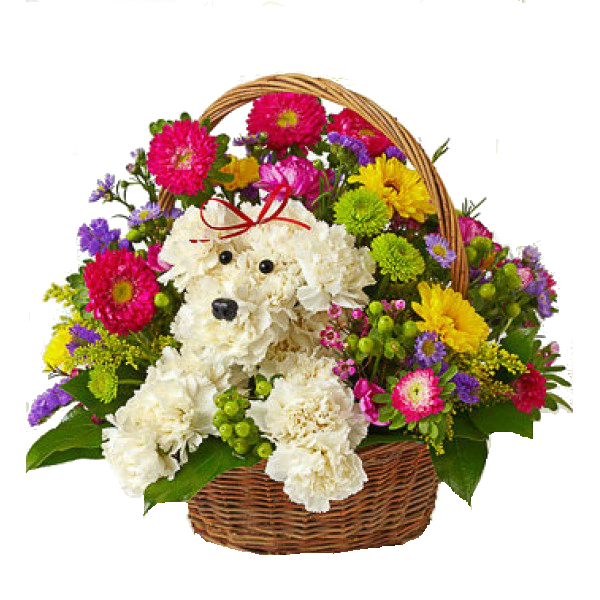 Birthday Flowers Bouquet PNG Transparent Image SVG Clip arts