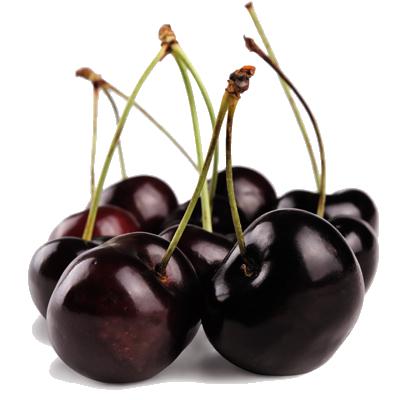 Black Cherry Transparent Background SVG Clip arts