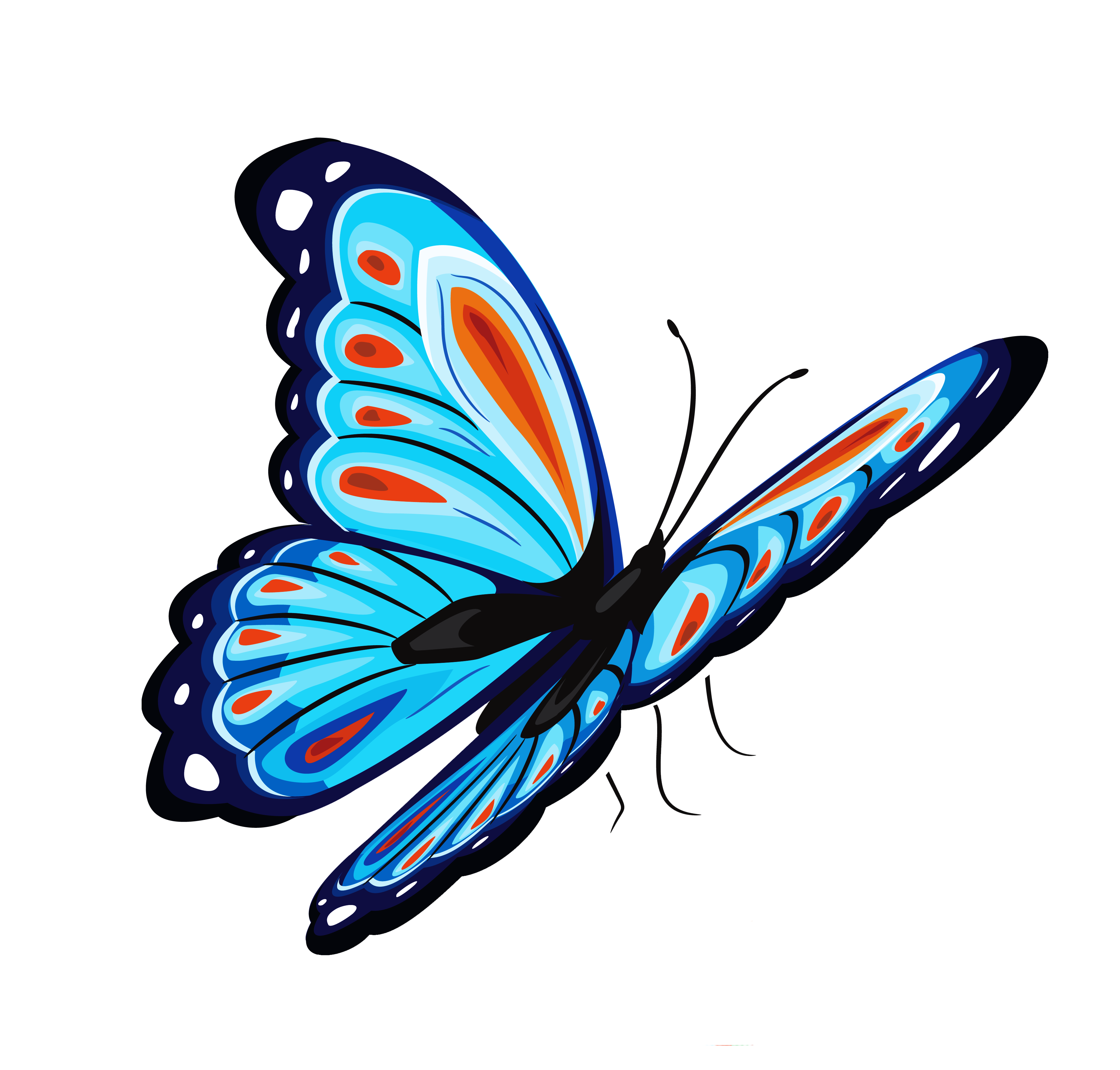 Blue Butterfly PNG SVG Clip arts
