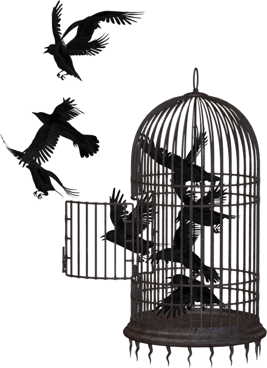 Cage PNG Picture SVG Clip arts