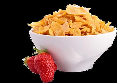 Cereal PNG Clipart SVG Clip arts
