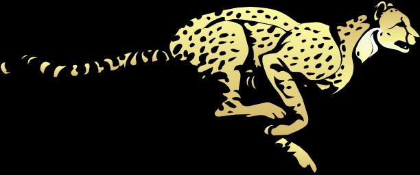 Cheetah PNG Transparent Image SVG Clip arts