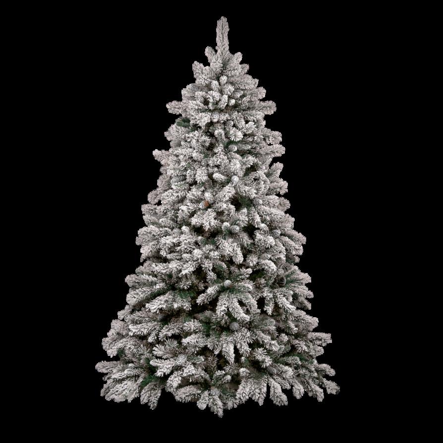 Christmas Tree PNG Photos SVG Clip arts