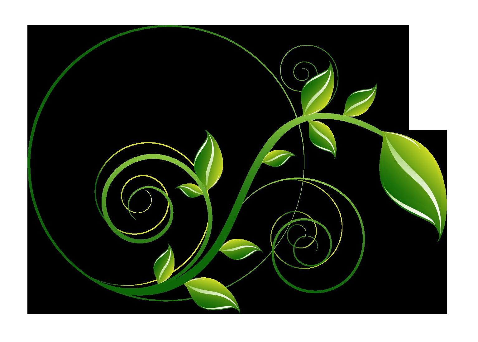 Decorative Leaf PNG File SVG Clip arts
