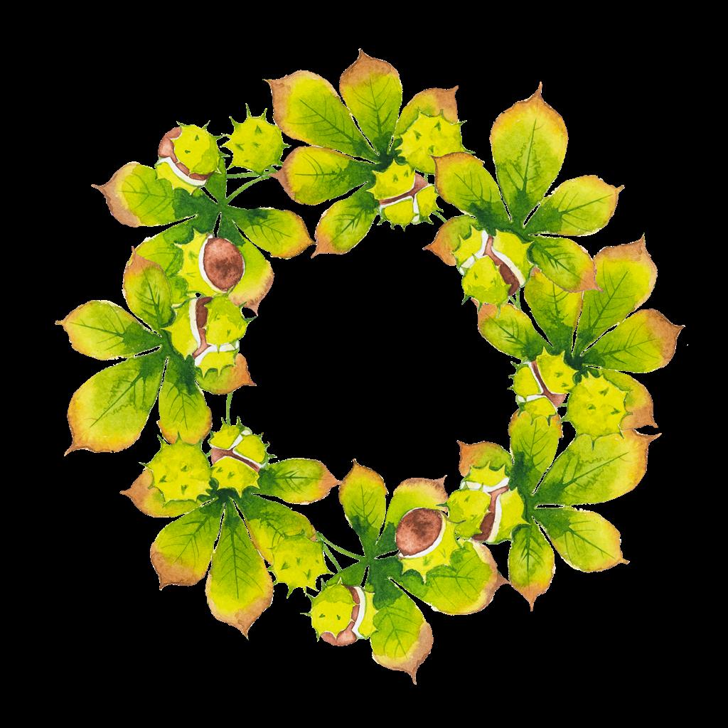 Decorative Leaf PNG Transparent SVG Clip arts