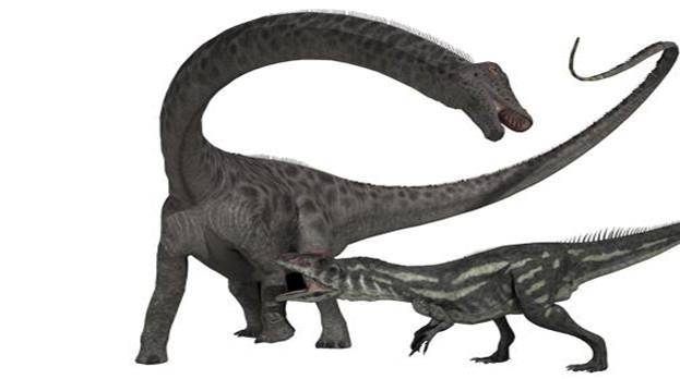 Diplodocus Background PNG SVG Clip arts
