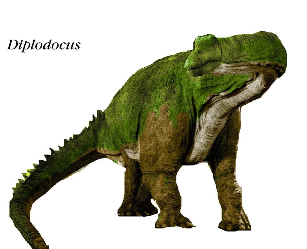 Diplodocus PNG Clipart SVG Clip arts