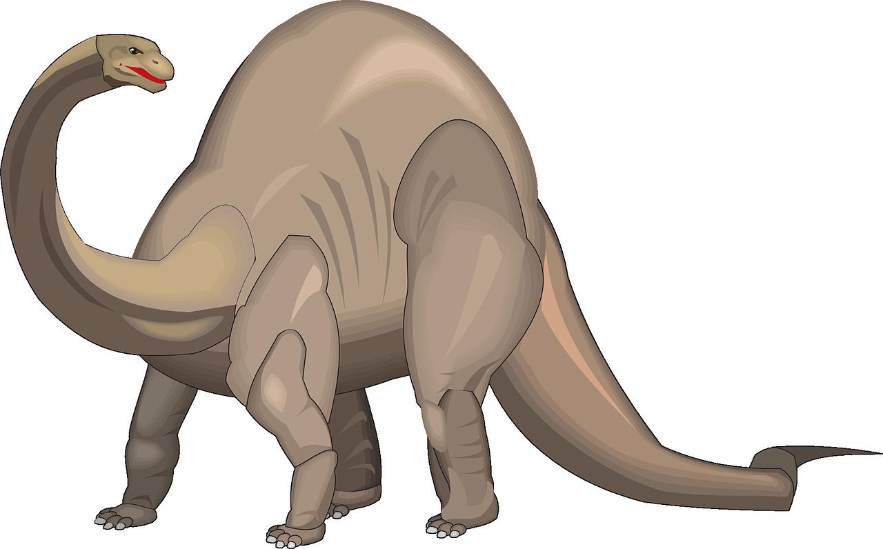 Diplodocus PNG Image PNG file