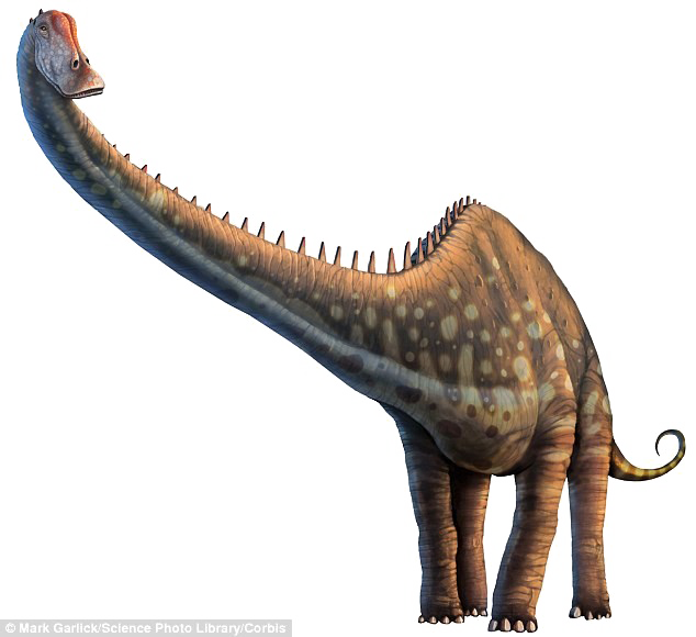 Diplodocus PNG Photos SVG Clip arts