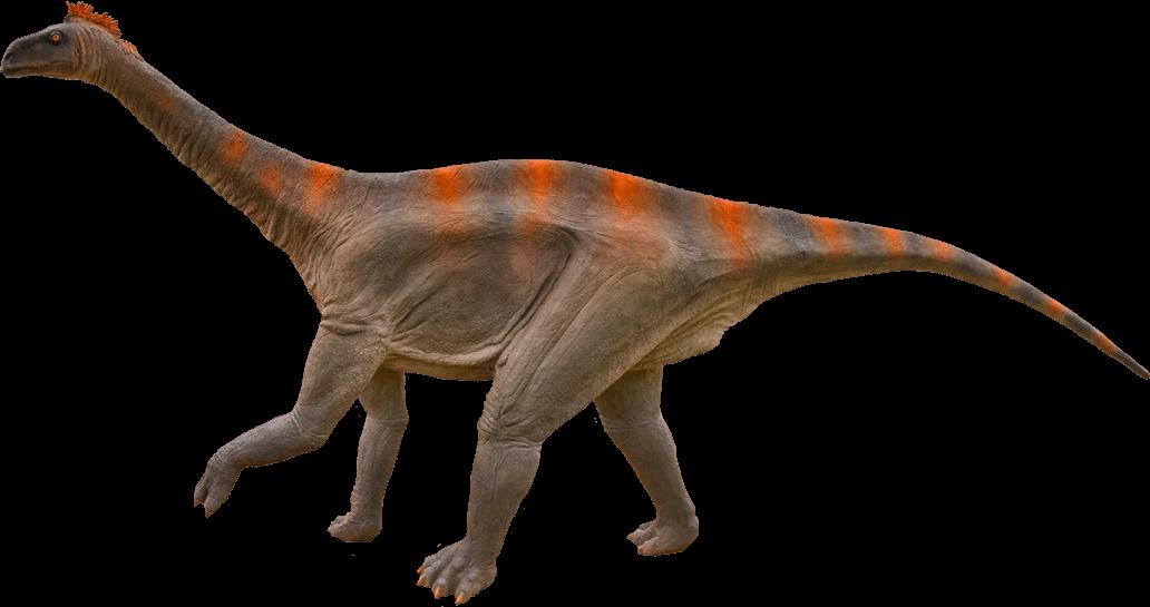 Diplodocus PNG Transparent SVG Clip arts
