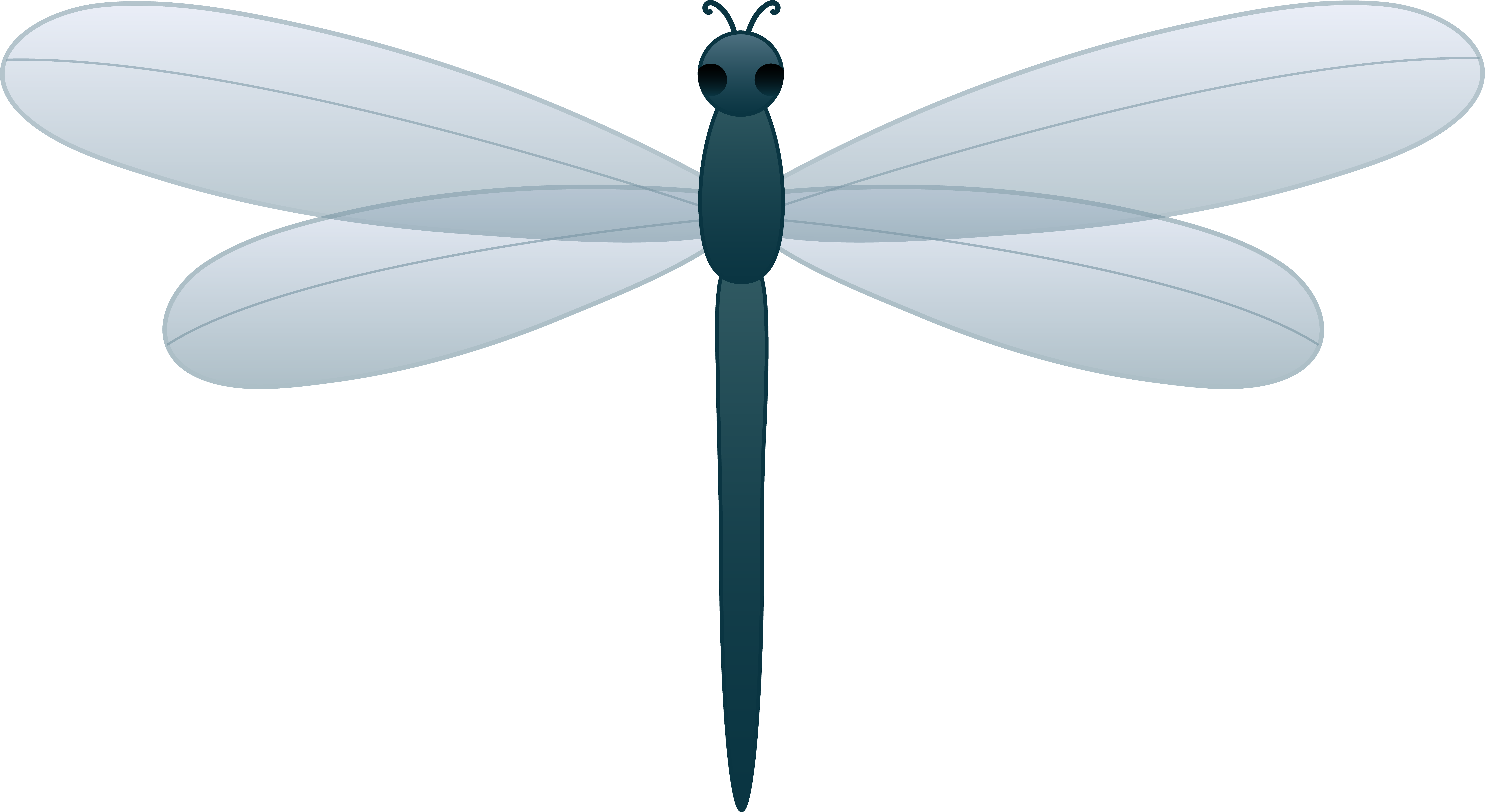 Dragonfly PNG Transparent Picture SVG Clip arts