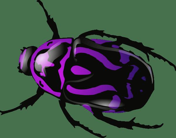 Dung Beetle PNG Image SVG Clip arts