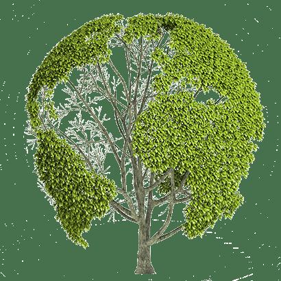 Earth Nature PNG Image SVG Clip arts