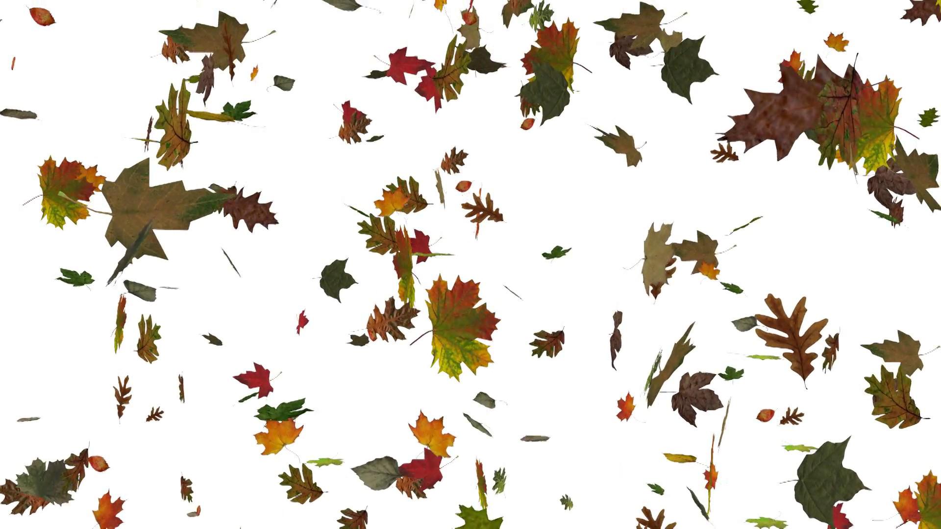 Falling Leaf PNG Image SVG Clip arts
