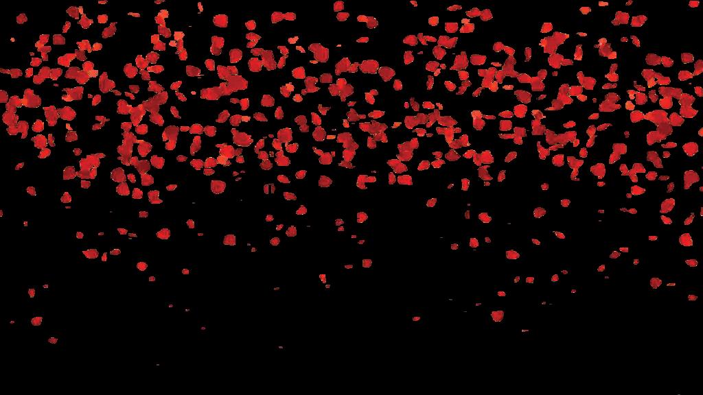 Falling Petals PNG Image SVG Clip arts