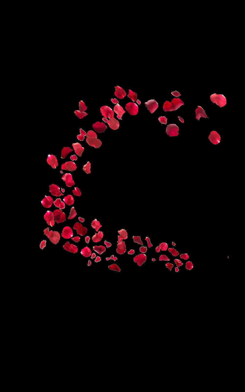 Falling Rose Petals PNG HD PNG, SVG Clip art for Web ...