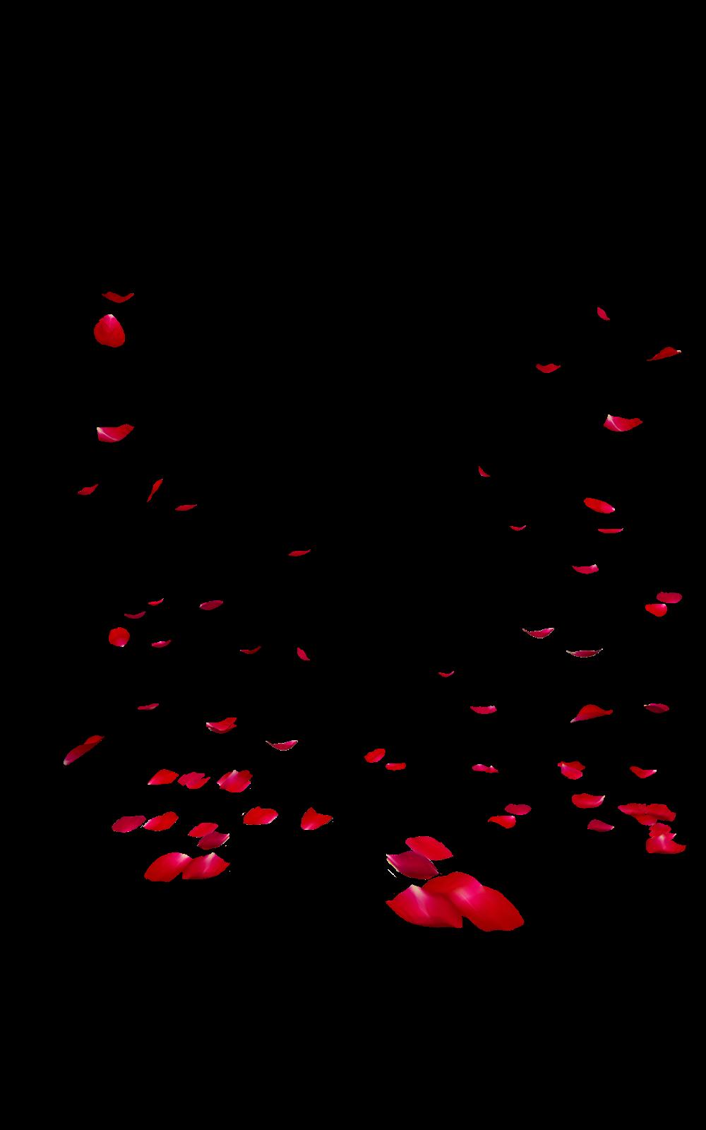 Falling Rose Petals Transparent Images PNG PNG, SVG Clip ...
