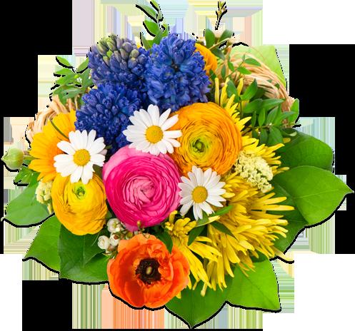 Flowers PNG Image SVG Clip arts