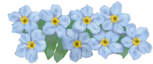Forget Me Not PNG HD SVG Clip arts