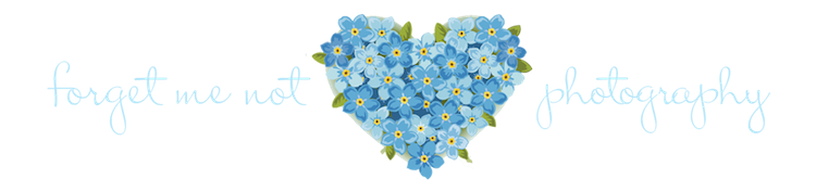 Forget Me Not PNG Photo SVG Clip arts