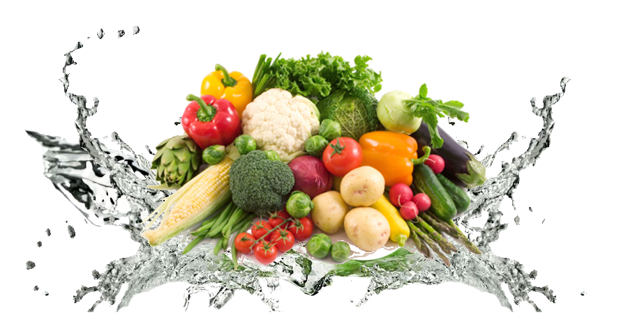 Fresh Healthy Food PNG Photo SVG Clip arts