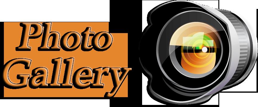 Gallery PNG HD SVG Clip arts