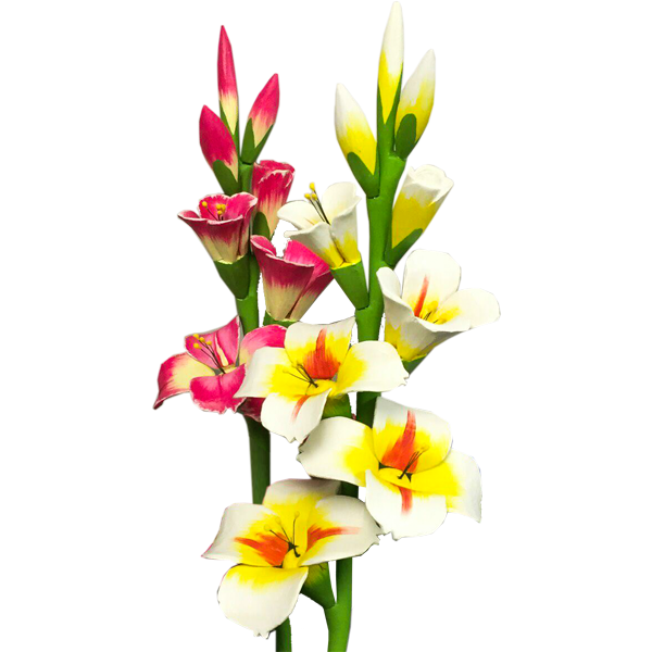 Gladiolus PNG Photo SVG Clip arts