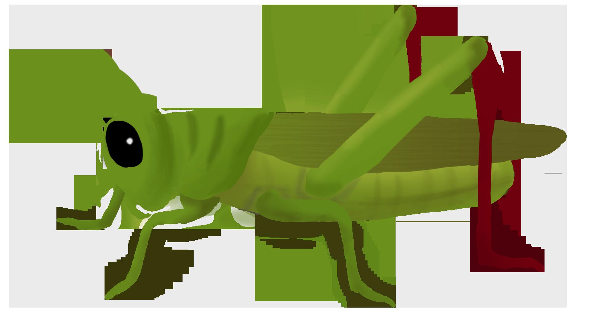 Grasshopper PNG Clipart SVG Clip arts