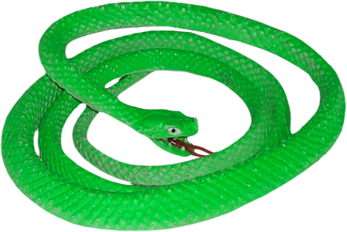 Green Snake PNG Image SVG Clip arts