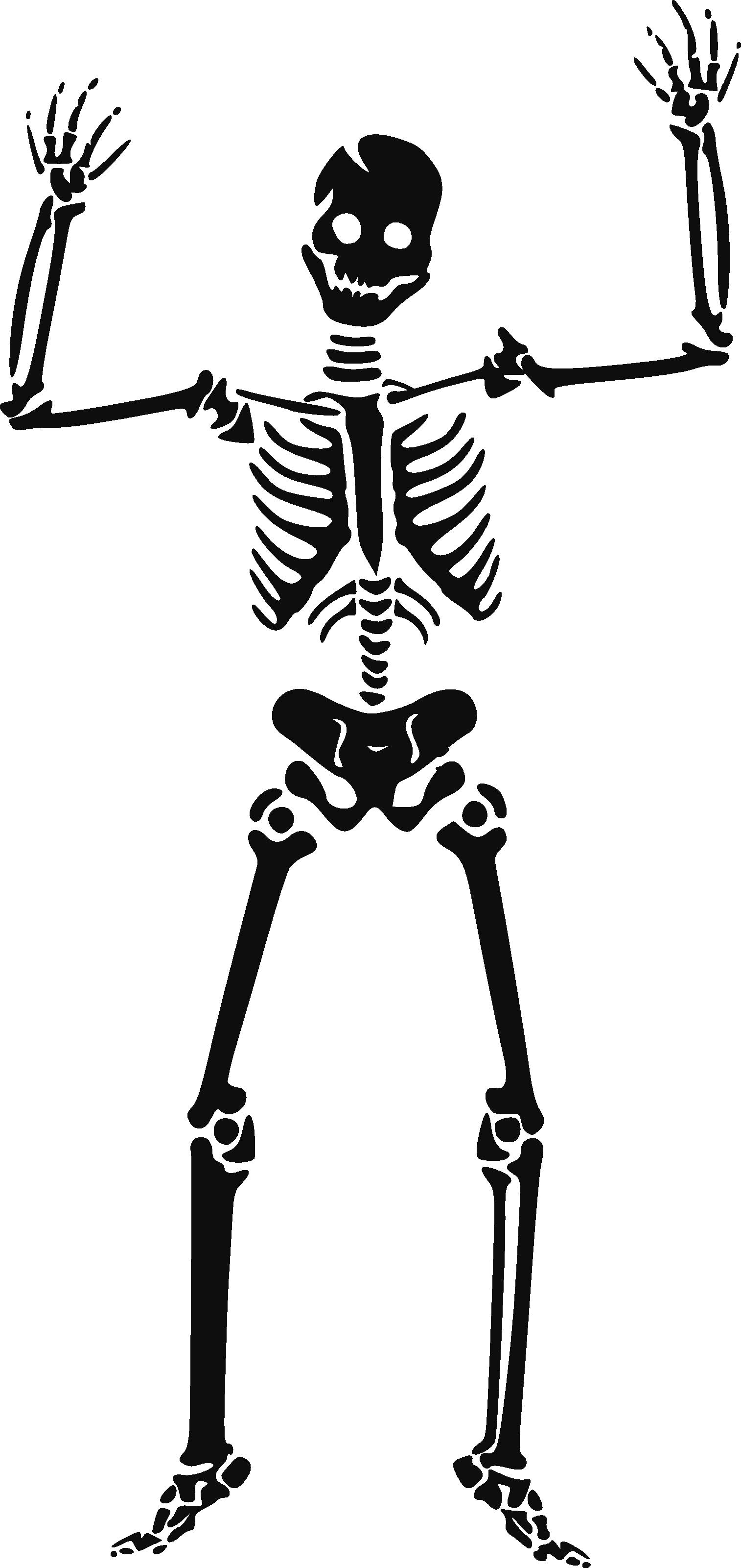 Halloween Skeleton PNG HD SVG Clip arts