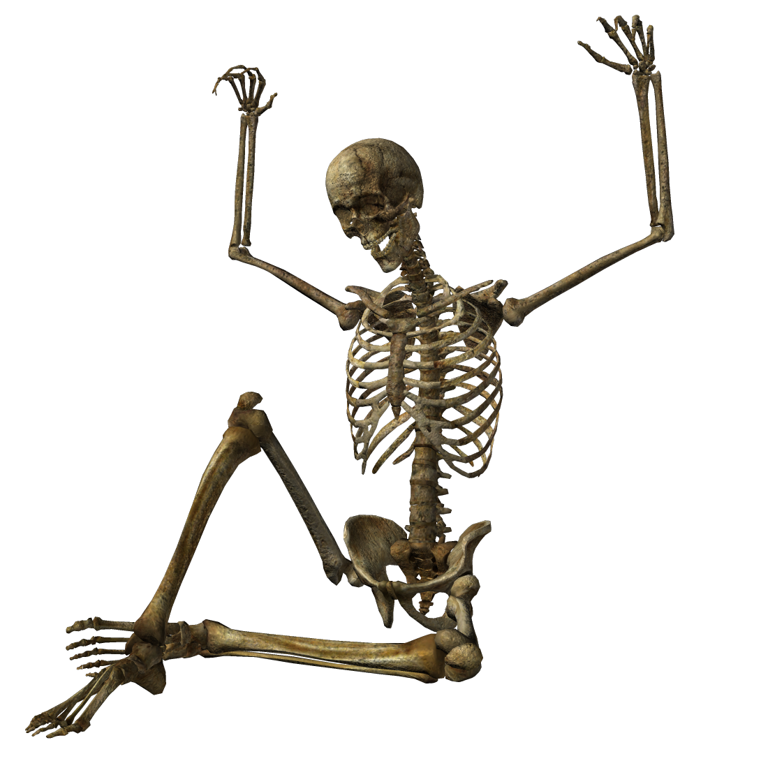 Halloween Skeleton PNG Pic SVG Clip arts