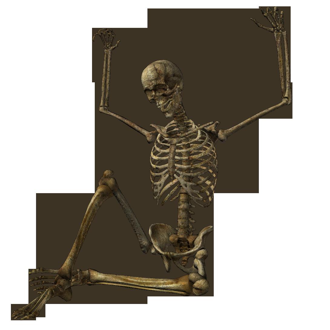 Halloween Skeleton PNG Pic SVG Clip arts