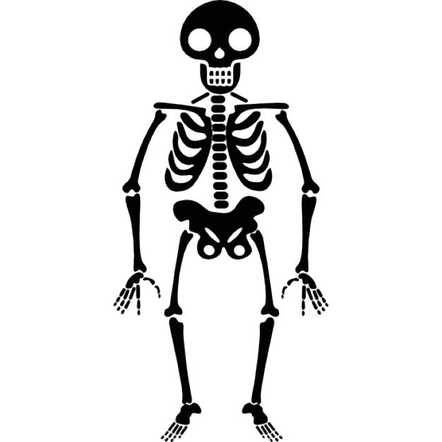 Halloween Skeleton Transparent PNG SVG Clip arts