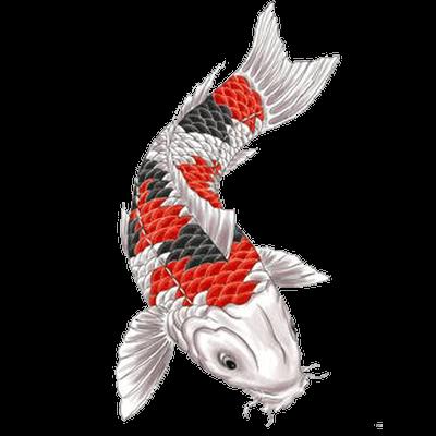 Japanese Designs PNG Clipart SVG Clip arts