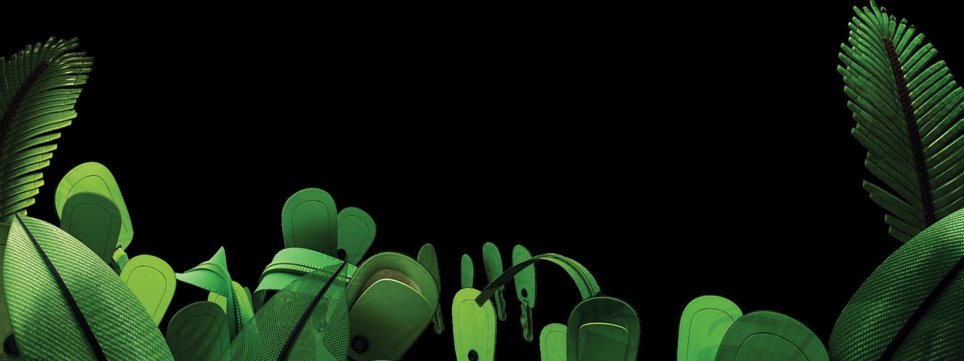 Jungle PNG Picture SVG Clip arts