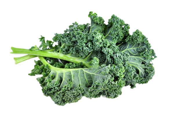 Kale Transparent PNG SVG Clip arts