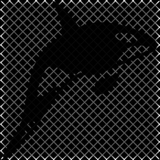 Killer Whale PNG Transparent SVG Clip arts