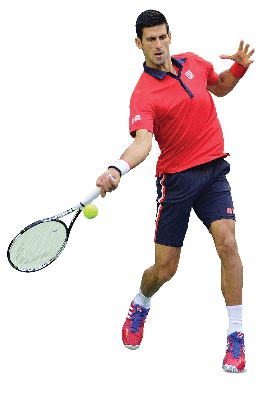 Novak Djokovic PNG File SVG Clip arts